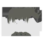 Tax Rhinos